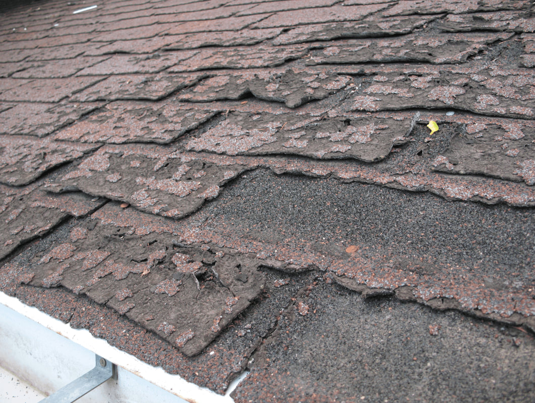 Water Damaged Asphalt Shingles